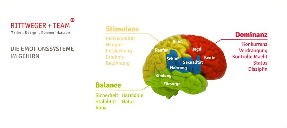 Die Emotionssysteme im Gehirn zur Nutzung bei der Markenentwicklung sowie bei der Entwicklung von Corporate Designs und Logos, Produkt- und Verpackungsdesign nach Neuromarketing Aspekten durch die Agentur Rittweger und Team